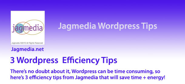 Need WordPress Help? Get Your Free Download from Jagmedia!