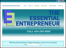 The Essential Entrepreneur